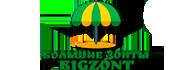 Большие зонты BigZont